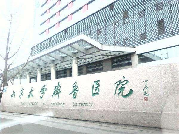 山东大学齐鲁医院工作站